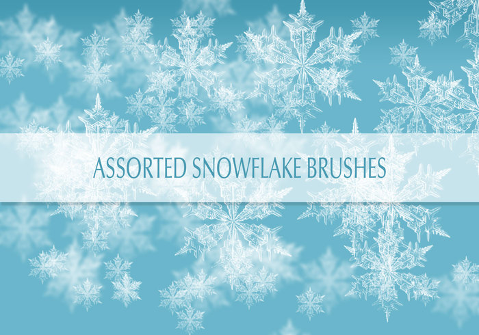 real-snow-flakes-brushes