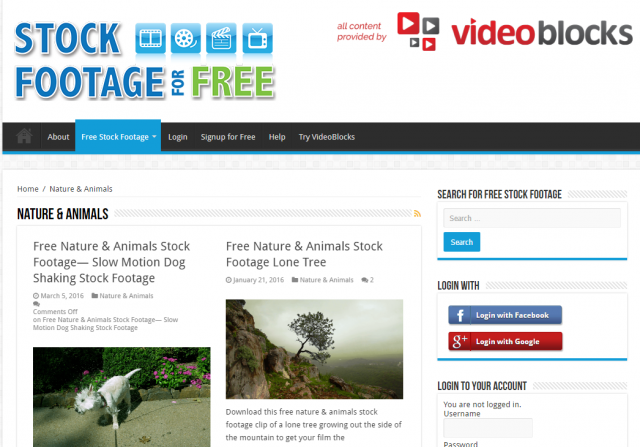 Nature   Animals Archives   Stock Footage For Free