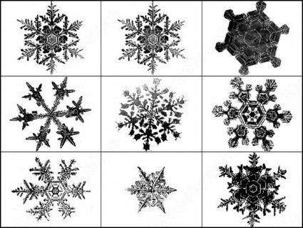 snowflakes_brush_39445
