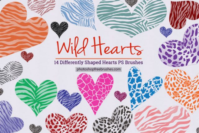 wild-hearts-ps-brushes-1